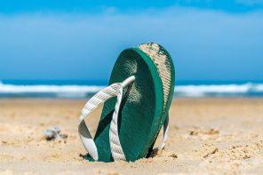 Top Employment Tips for Waitangi Day 2021